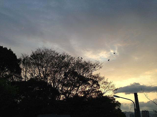 「フラワーズ」2015年 6月号 感想  その1 とりかえ・ばや  田村由美読切