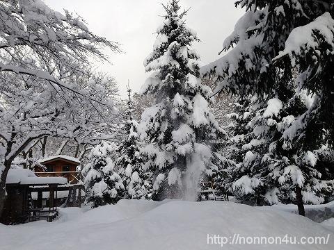 「ゆるキャン」見て雪中キャンプ行ってきました